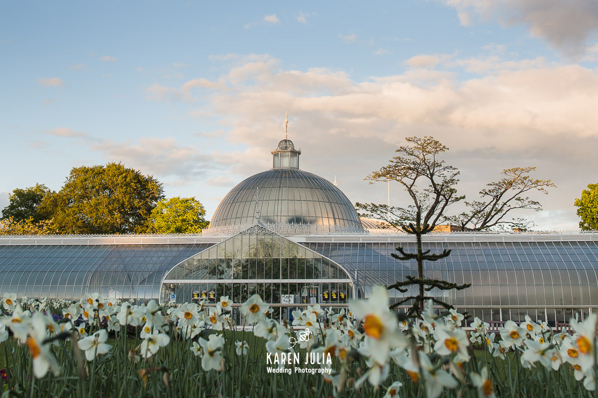 Kibble Palace at sunrise in the spring with daffodils